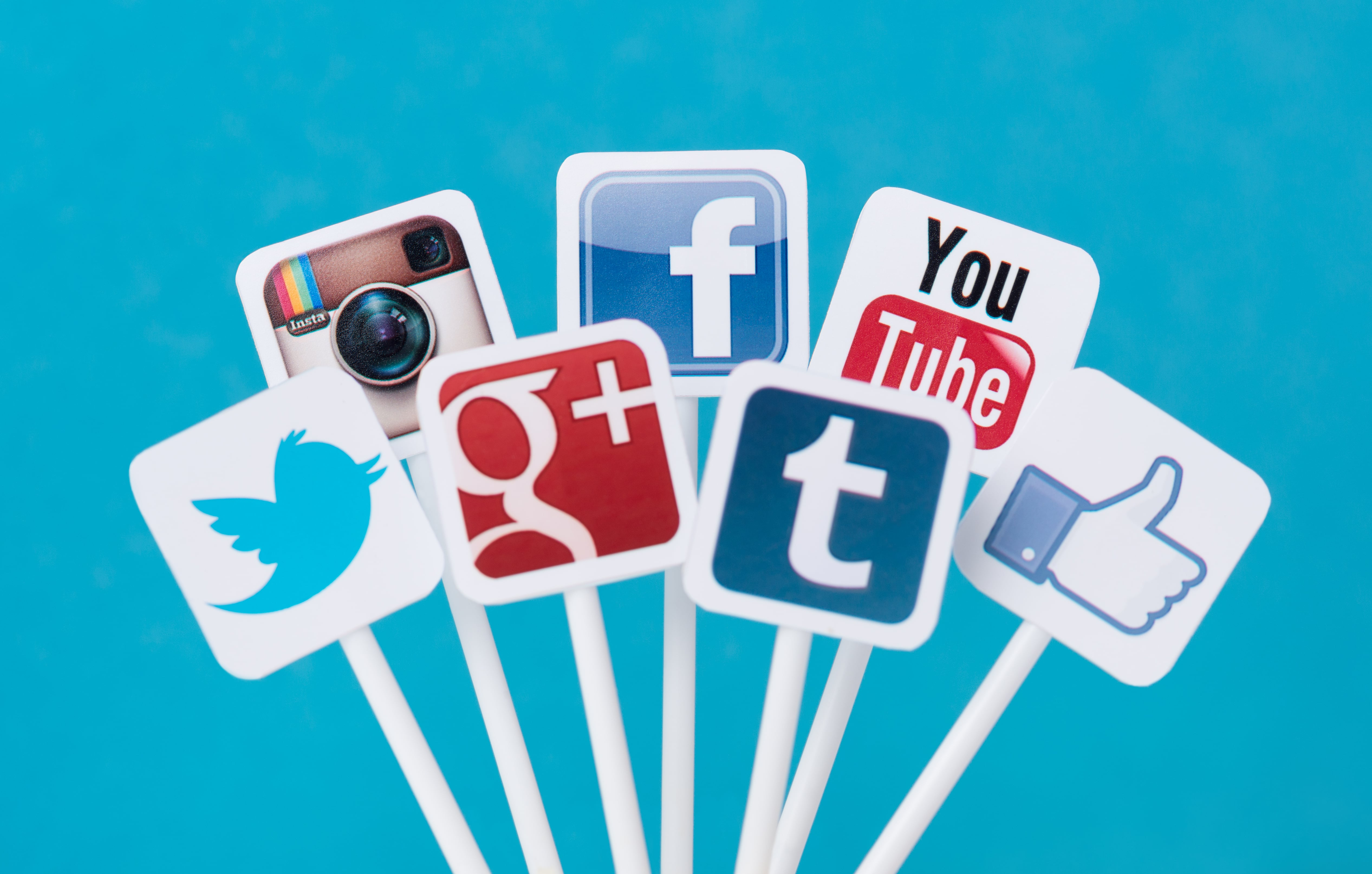 5 Examples of Social Media Campaigns You Can Learn From